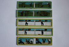 5 plaque verre lanterne magique projection film 13,5*3 cm humour cueilleur pomme