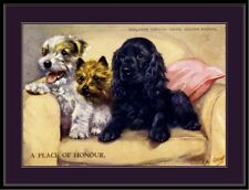 English Picture Print Sealyham Cairn Terrier Dog Puppy Dogs Puppies Poster Art