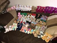 Huge Mixed Lot of 850+ TY Beanie Babies & Buddys Including Rare, Error & Retired