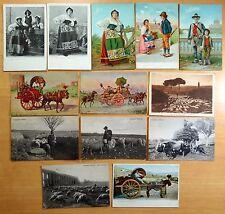 13 Postcards Costumi Romani Campagne Roma Carro da Vino Ox Cart Sheep Rome Italy