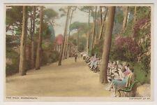 Dorset postcard - Pine Walk, Bournemouth - P/U