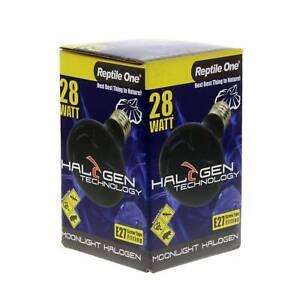 Halogen Heat Lamp Moonlight 28W Eqv 40W E27 Kongs Reptile Light Vivarium Health
