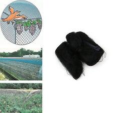 Knotted Mist Net Nylon monofilament 6x3M 15mm Hole Orchard Anti Bird Net PL