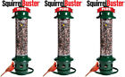 3- Pack Brome Squirrel Buster Plus Bird Feeder w/ Cardinal Perch Ring 1024 -