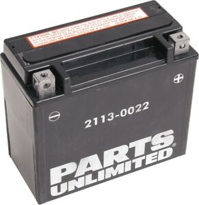 Parts Unlimited AGM Maintenance-Free Battery YTX20HL-BS