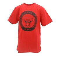 Chicago Bulls Official NBA Apparel Kids Youth Size T-Shirt New with Tags