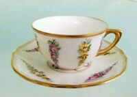 Hand Painted Demitasse Tea Cup & Saucer Set Fine Detail Germany