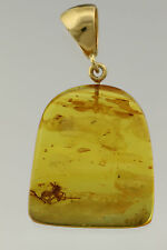 Fossil SPIDER Genuine BALTIC AMBER Silver Gold Plated Pendant 6.1g i161208-6