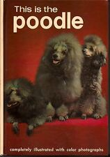 This is the Poodle, Martin, 1960 color & b&w photos dog