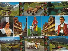 Appenzellerland , Ansichtskarte, 1976 gel.