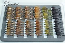 Eliteflies 96 Competition Cruncher value set fly fishing nymphs flies trout lake
