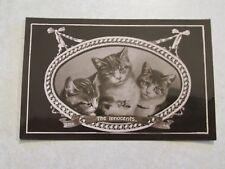 F119 Vintage Postcard Kittens Cat The Innocents Davidson Bros