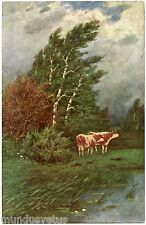 VACHES . CAMPAGNE. CAMPAIGN. COWS. ARTIST SIGNED
