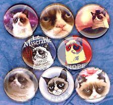 Grumpy Cat 8 NEW buttons pins badges meme viral internet