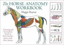 The Horse Anatomy Workbook by Maggie Raynor (2005, Spiral, Workbook)