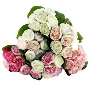 Peony, Pfingstrosen Strauß mit 7 Blüten 3 Blätter, diverse Farben !!!
