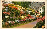 Interior Conservatory Washington Park Chicago 1939 Vintage Postcard BB1