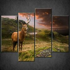 RED Deer SUNSET SPLIT Tela Muro Arte Foto Stampa Taglie Grandi Disponibili