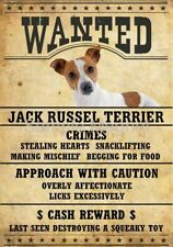 "Jack Russell Terrier Wanted Poster Fridge Dog Magnet Large 3.5"" X 5"""