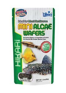 Hikari Mini Algae Wafers Sinking Mini Wafer   Free Shipping