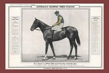 PRINCE FOOTE Melbourne Cup Winner 1909 modern Digital Photo Postcard