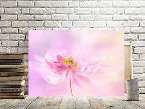 PINK FLOWERS CANVAS PICTURES PINK FLORAL WALL ART WALL DECOR PINK HOME DECOR