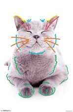 SCARED CAT POSTER FUNNY HUMOR 16341 22x34 CURRENT MOOD