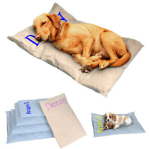 Winter Dog Bed Mat with Personalized Dog Name Warm Plush Thick Cartoon Blankets