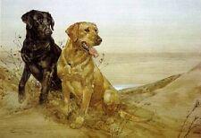 Thomas Quinn BLACK AND YELLOW art print Labrador Retriever Dogs