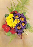 B52046 fleurs flowers