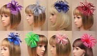 Looped Net & Feather Fascinator on Forked Clip/ Brooch/Pin - Weddings/ Races etc
