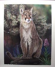 "Randy FEHR Mountain Lion LTD art mint print Cougar COA ""Crowsnest Summer"" RARE"