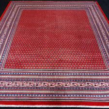 250 cm-Breite x Handgeknüpft Nepalesische Wohnraum-Teppiche -/Herstellung