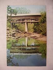 VINTAGE PHOTO POSTCARD PIGEON BRIDGE IN SEVIER COUNTY TENNESSEE UNUSED