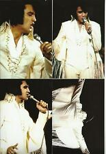 Elvis Presley 5 Photo Set-Rare White FRINGE SUIT- 1970 LA FORUM & FREE CD