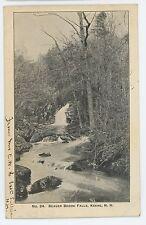 Beaver Brook Falls KEENE NH Vintage 1905 UDB New Hampshire Postcard