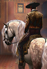 QUALITY CANVAS ART PRINT  * Spanish Horse & Rider