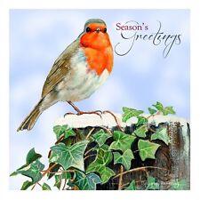 Charité cartes de Noël-Robin à Noël (10 cartes de 1 Design)