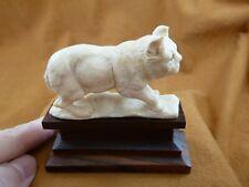 (LYNX-6) large white Lynx cat Bobcat shed ANTLER figurine Bali detailed carving