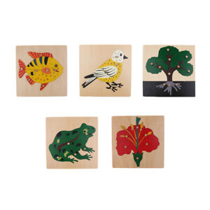 5 Sets Animal Plant Wooden Montessori Jigsaw Puzzle Kids Cognitive Game Toy