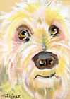 ACEO mixed media painting of a scruffy dog. (original-not a print or copy)