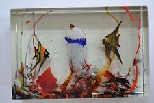 Rare Signed Alfredo Barbini Cenedese Murano Glass Aquarium