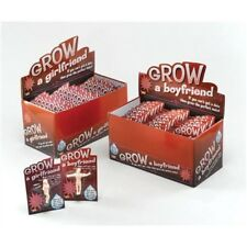 Grow A Boyfriend Hen Party Gift - Your Own Partner Grows Water Funny Gag