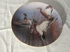 Collectible Plate Danbury Mint Ducks Misty Morning David Maass wildlife