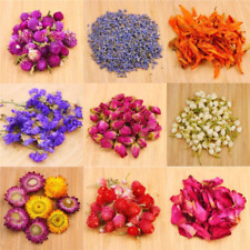 Oameusa Dried Flowers,Dried Flower Kit,Candle Making, Soap Making, Aaa Food