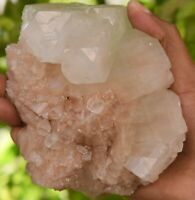 APOPHYLLITE WITH STILBITE Crystals & Mineral Specimens #05