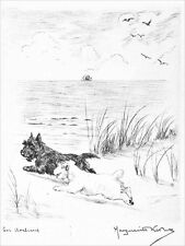 Sealyham & Scottish Terrier Dogs Marguerite Kirmse 1926 8 New Large Note Cards