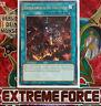 YU-GI-OH! Extreme Force EXFO-DE Karten zur Auswahl NEU YGO Karten choose