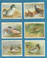 Players cigarette cards - GAME BIRDS & WILD FOWL - Full mint condition set.