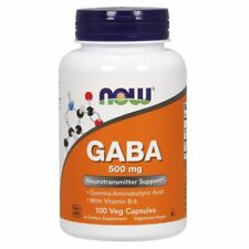 Gaba 500mg Neurotransmitter Support 100 ct by NOW Foods Exp.02/23